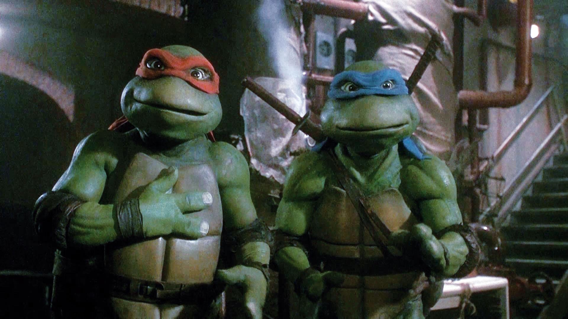 Die Turtles Der Film